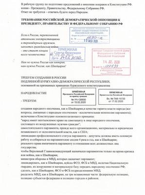 Конституционные поправки Российской демократической оппозиции