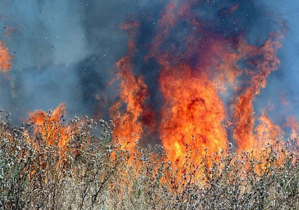 В Новороссийске сохраняется высокая пожароопасность